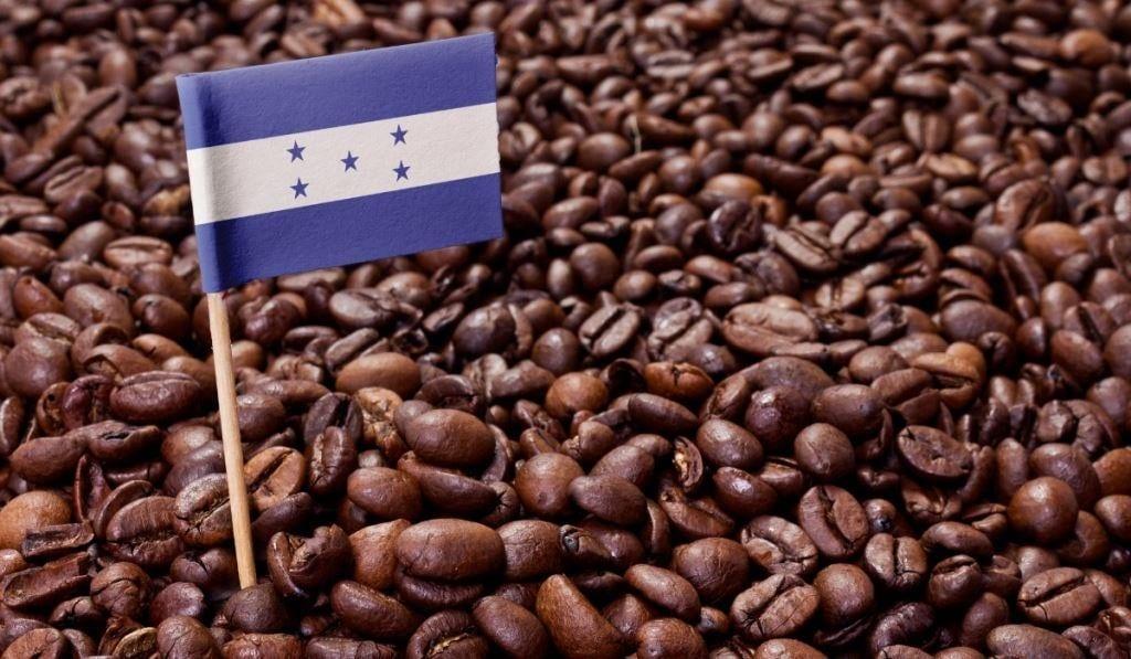 Coffee In Honduras