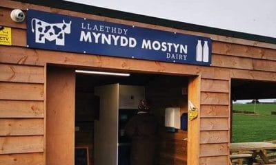 Llaethdy Mynydd Mostyn Dairy